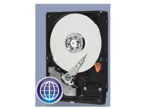 Western Digital Caviar Blue - Disco duro interno 1 TB (7200 rpm, 3.5